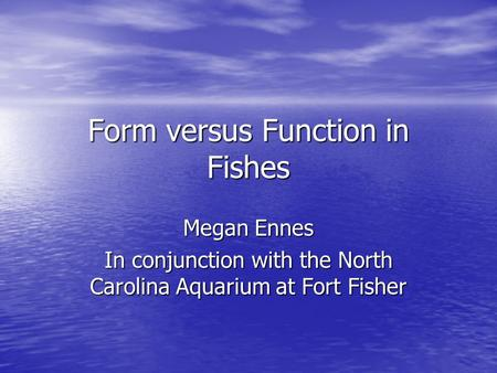 Form versus Function in Fishes Megan Ennes In conjunction with the North Carolina Aquarium at Fort Fisher.