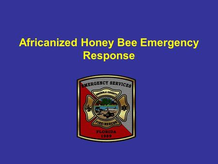 Africanized Honey Bee Emergency Response. Yellow Jacket,Wasp vs Bee Yellow Jackets, Wasps can sting multiple times. Honey bees can sting animals but.
