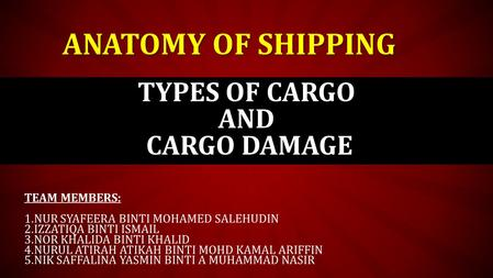 TYPES OF CARGO AND CARGO DAMAGE
