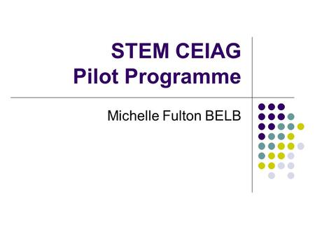 STEM CEIAG Pilot Programme Michelle Fulton BELB. STEM CEIAG Joint ELB Action Plan DE (£340K) approved plan to: address ELB Resource Allocation Plan Targets.