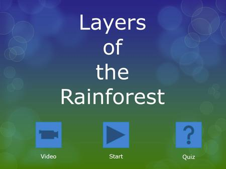 Layers of the Rainforest VideoStart Quiz. Four Layers Forest FloorUnderstory Canopy Emergent.