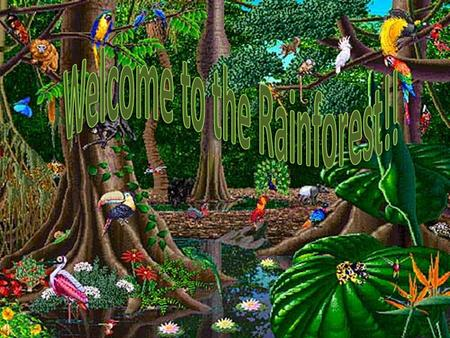 Rainforest Animals Emergent Layer This layer is made up of a few tall trees. They peek out from the layer below. Only animals that fly or climb can get.