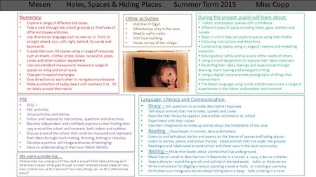 Mesen Holes, Spaces & Hiding Places Summer Term 2015 Miss Copp