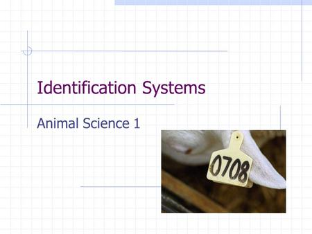 Identification Systems Animal Science 1. Competency 11.0 Differentiate identification systems used in the animal industry.