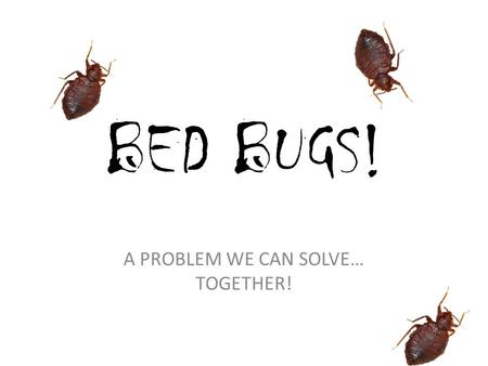 A PROBLEM WE CAN SOLVE… TOGETHER!