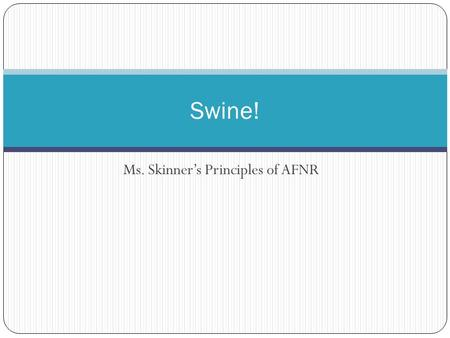 Ms. Skinner's Principles of AFNR Swine!. Vocabulary Barrow: a male swine castrated while young, in which physical traits of the boar have not developed.
