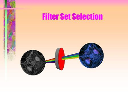 Filter Set Selection. It is best to follow this presentation with a Fluorophore excitation/emission maxima chart to hand.