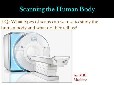 Scanning the Human Body EQ: What types of scans can we use to study the human body and what do they tell us? An MRI Machine.
