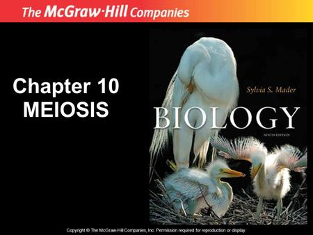Copyright © The McGraw-Hill Companies, Inc. Permission required for reproduction or display. Chapter 10 MEIOSIS.