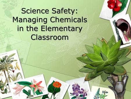 Science Safety: Managing Chemicals in the Elementary Classroom.