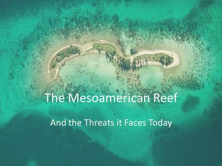 The Mesoamerican Reef And the Threats it Faces Today.