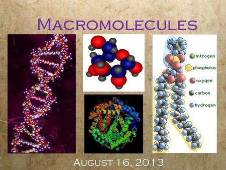 Macromolecules August 16, 2013. Objectives  Identify macromolecule type from pictures or models  Describe the functions of macromolecules  Identify.