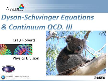 Craig Roberts Physics Division. Dyson-Schwinger Equations  Well suited to Relativistic Quantum Field Theory  Simplest level: Generating Tool for Perturbation.