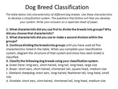 Dog Breed Classification