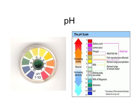 PH. What is pH? pH measures the amount of H+'s in a solution –Water splits to form ions –H+ and OH- H+H+ H+H+ H+H+ H+H+ H+H+ H+H+