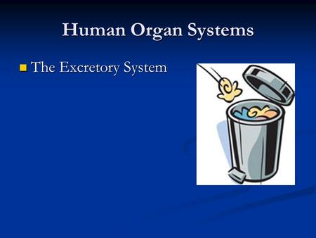 Human Organ Systems The Excretory System The Excretory System.
