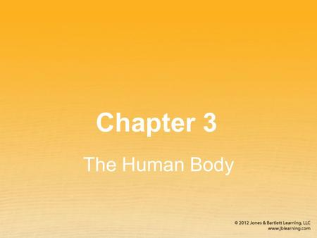 Chapter 3 The Human Body. First aiders must be familiar with the basic structure and functions of the human body. The most important and sensitive organs.
