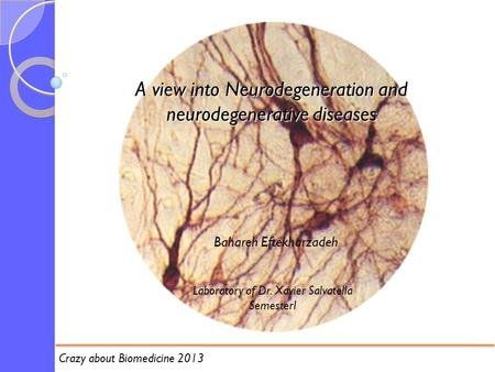 A view into Neurodegeneration and neurodegenerative diseases Bahareh Eftekharzadeh Laboratory of Dr. Xavier Salvatella SemesterI Crazy about Biomedicine.
