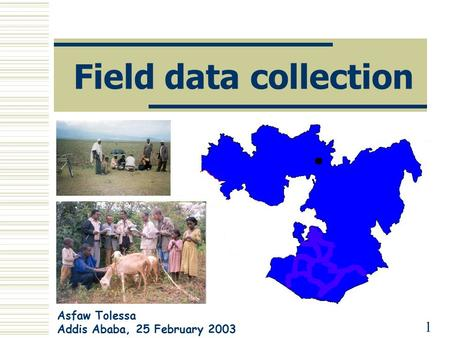 Field data collection Asfaw Tolessa Addis Ababa, 25 February 2003 1.