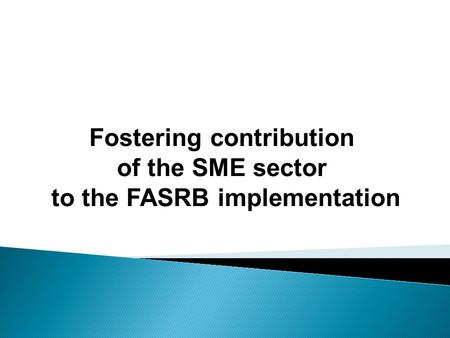 Fostering contribution of the SME sector to the FASRB implementation.