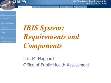 IBIS System: Requirements and Components Lois M. Haggard Office of Public Health Assessment.