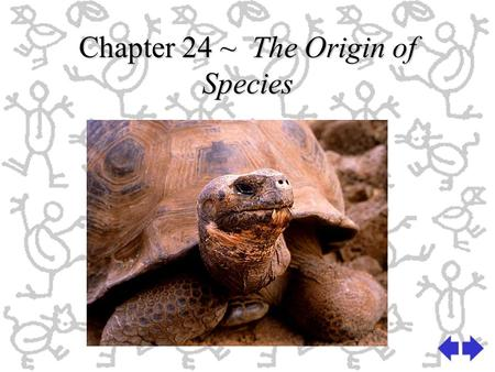 Chapter 24 ~ The Origin of Species