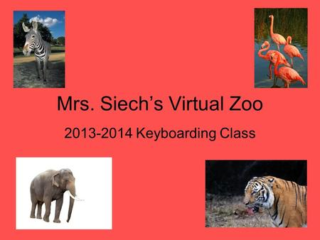 Mrs. Siech's Virtual Zoo 2013-2014 Keyboarding Class.