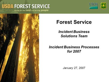 Forest Service Incident Business Solutions Team Incident Business Processes for 2007 January 27, 2007.