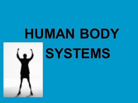 HUMAN BODY SYSTEMS. Why are my body systems like a set of dominos?