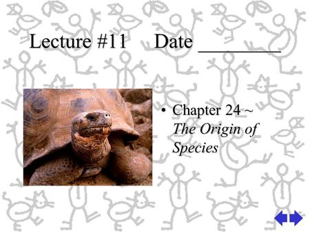 Lecture #11 Date ________ Chapter 24 ~ The Origin of Species.