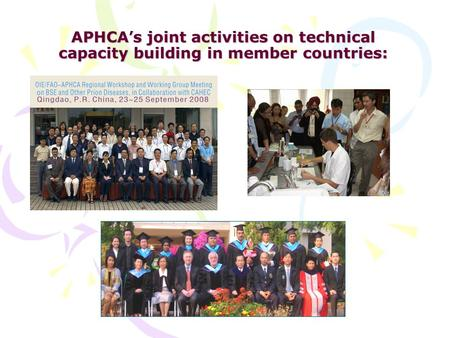 APHCA ' s joint activities on technical capacity building in member countries: