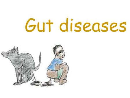 Gut diseases. These diseases can make people sick too Research shows between 20% to 67% of community dogs have gut diseases like: Worms Giardia and Salmonella.