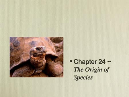 Chapter 24 ~ The Origin of Species Chapter 24 ~ The Origin of Species.