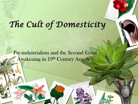 The Cult of Domesticity Pre-industrialism and the Second Great Awakening in 19 th Century America.