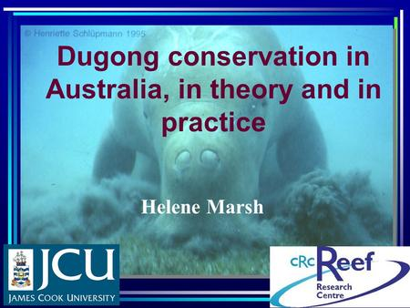 Dugong conservation in Australia, in theory and in practice Helene Marsh.