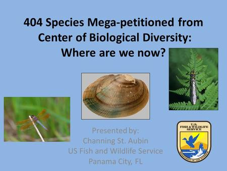 404 Species Mega-petitioned from Center of Biological Diversity: Where are we now? Presented by: Channing St. Aubin US Fish and Wildlife Service Panama.