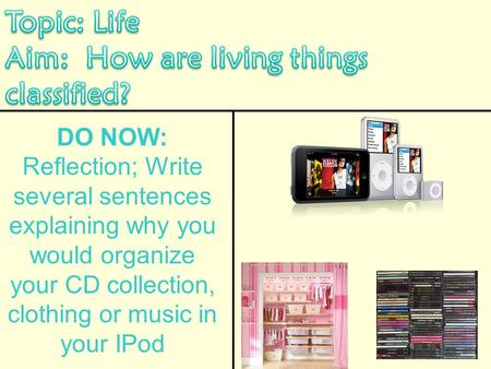 DO NOW: Reflection; Write several sentences explaining why you would organize your CD collection, clothing or music in your IPod.