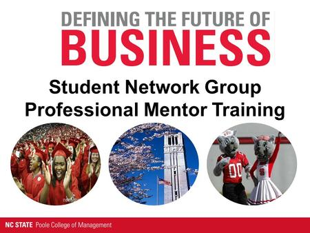 Student Network Group Professional Mentor Training.