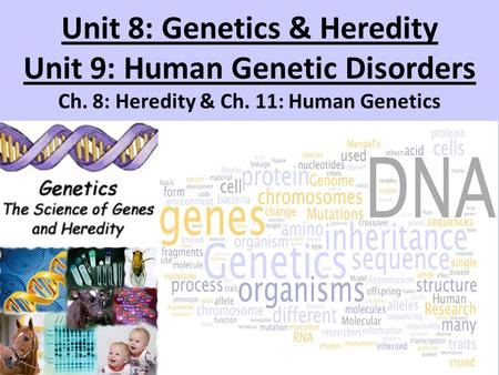 Unit 8: Genetics & <strong>Heredity</strong> Unit 9: Human Genetic Disorders Ch. 8: <strong>Heredity</strong> & Ch. 11: Human Genetics <strong>heredity</strong>.