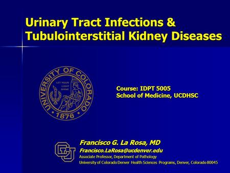 Course: IDPT 5005 School of Medicine, UCDHSC Urinary Tract Infections & Tubulointerstitial Kidney Diseases Francisco G. La Rosa, MD