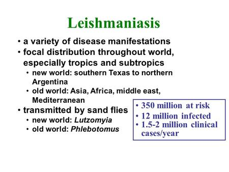 Leishmaniasis a variety of disease manifestations focal distribution throughout world, especially tropics and subtropics new world: southern Texas to northern.