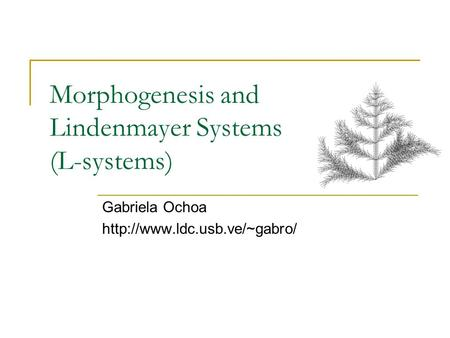 Morphogenesis and Lindenmayer Systems (L-systems) Gabriela Ochoa