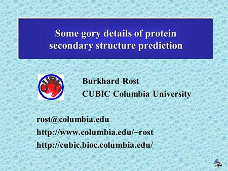 Burkhard Rost (Columbia New York) Some gory details of protein secondary structure prediction Burkhard Rost CUBIC Columbia University