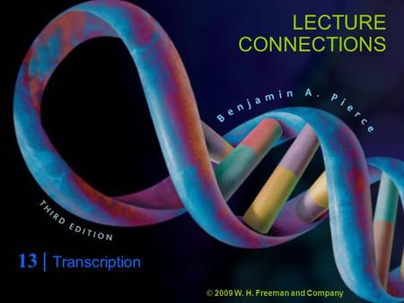 LECTURE CONNECTIONS 13 | Transcription © 2009 W. H. Freeman and Company.
