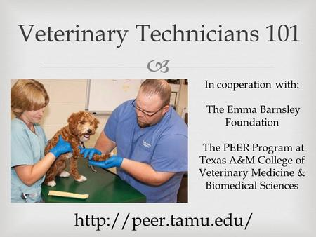  Veterinary Technicians 101 In cooperation with: The Emma Barnsley Foundation The PEER Program at Texas A&M College of Veterinary Medicine & Biomedical.