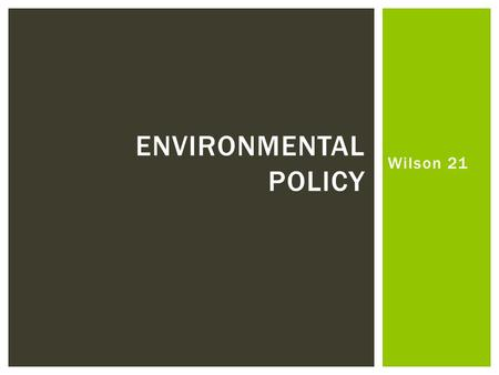Wilson 21 ENVIRONMENTAL POLICY. Who Governs?  Why have environmental issues become so important in American politics and policy-making?  Does the public.