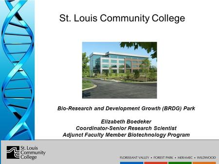 Bio-Research & Development Growth Park at the Danforth Center St. Louis Community College Bio-Research and Development Growth (BRDG) Park Elizabeth Boedeker.