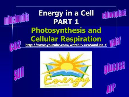 Energy in a Cell PART 1 Photosynthesis and Cellular Respiration Energy in a Cell PART 1 Photosynthesis and Cellular Respiration