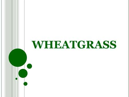 WHEATGRASS HISTORY Wheat grass was used by Chinese as early as 2800 BC.