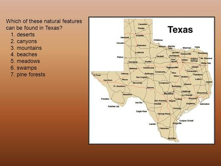 Which of these natural features can be found in Texas? 1. deserts 2. canyons 3. mountains 4. beaches 5. meadows 6. swamps 7. pine forests.